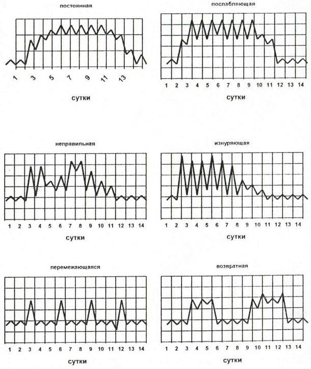 Типы лихорадок по характеру температурной кривой